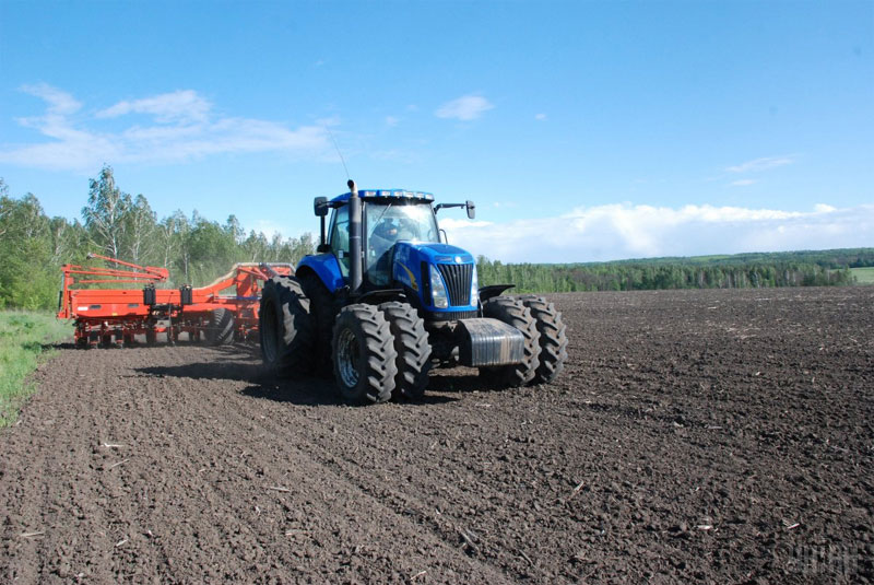 аграрии области сеют озимые культуры под урожай 2019 года